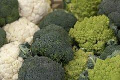 romanesco cauliflower брокколи Стоковые Изображения