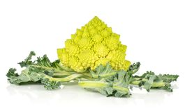 Fresh romanesco cauliflower isolated on white. Romanesco cauliflower or broccoli isolated on white background one green head with leaves Royalty Free Stock Photography