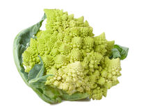 Romanesco cauliflower isolated Stock Image