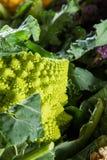 Romanesco cauliflower Stock Image