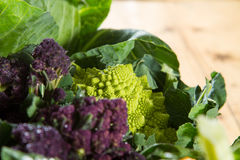 Romanesco cauliflower Stock Photography