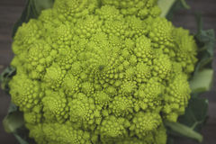 Romanesco cauliflower with logarithmic spirals with fibonacci nu. Mber royalty free stock images