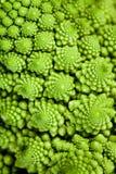 Romanesco di Broccolo (brassica oleracea) Immagine Stock