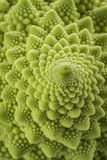Romanesco Florets in a logarithmic spiral Stock Photo