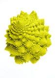 Romanesco (oleracea Brassicae) Stock Afbeeldingen