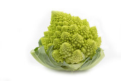 Romanesco on white Stock Photos