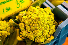 Romanescobroccoli Royalty-vrije Stock Afbeelding
