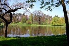 Romanescu park Royalty Free Stock Photos