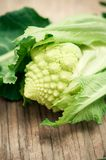 Romanesque broccoli royalty free stock image