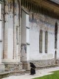 Romania. Bukovina, Moldovita, painted monasterie. Nun sweeping. stock image