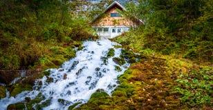 Romania. cascada 7 izvoare. 7 springs waterfall Royalty Free Stock Images