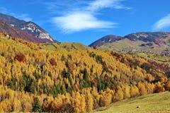 Romania countryside Stock Photo