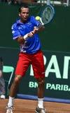 Romania-Czech Republic, Davis Cup 2011 Royalty Free Stock Images