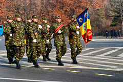 Romania flag Royalty Free Stock Photography