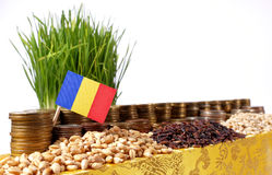 Romania flag waving with stack of money coins and piles of wheat. And rice seeds Stock Images