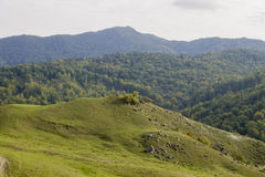 Romania mountains Stock Image