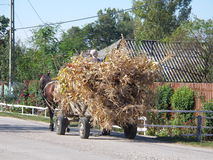 Romania road riding. Traditional horses and cart on the street in a village in Romania Stock Image