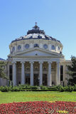 The Romanian Athenaeum in Bucahrest,Romania Royalty Free Stock Photo