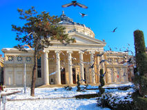 Romanian Athenaeum, Bucharest, Romania Stock Photo
