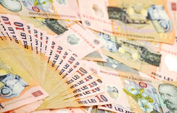 Romanian banknotes Stock Image