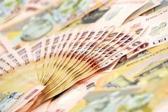 Romanian banknotes Royalty Free Stock Photo