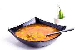 Romanian borsch. Made with 7 different vegetables (shallow DOF royalty free stock photos