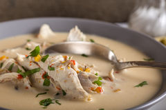 Romanian chicken soup named Ciorba Radauteana. Close up of Romanian chicken soup named Ciorba Radauteana on plate with spoon Stock Images
