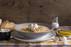 Romanian chicken soup named Ciorba Radauteana. On plate Stock Photos