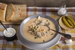 Romanian chicken soup named Ciorba Radauteana. On plate Royalty Free Stock Photo