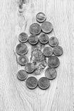 Romanian coins Stock Photo
