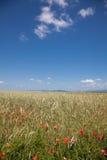 Romanian countryside Stock Photo