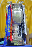 Romanian Cup Trophy Royalty Free Stock Photos
