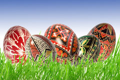 Romanian easter eggs. Hand painted romanian easter eggs in fresh green grass Royalty Free Stock Image