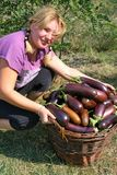Romanian farmer girl Stock Photos