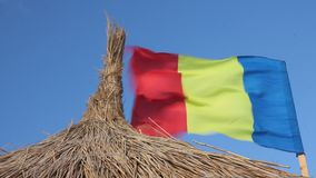 Romanian flag waving and reed stock footage