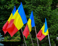 Romanian flags Royalty Free Stock Photos