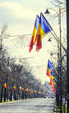 Romanian Flags in the sun, National Day of Romania Stock Image