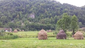 Romanian haystacks Royalty Free Stock Photography
