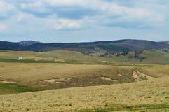 Romanian hills and horizon Royalty Free Stock Photos