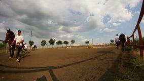 Romanian horses parade Royalty Free Stock Photo