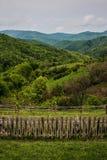 Romanian krajobraz Obraz Royalty Free
