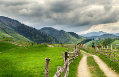 Romanian Landscape. The dream way. Wonderful landscape in Romania, Simon Stock Photos