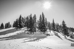 Winter landscapes in Romania. Romanian landscapes in the winter, Bicaz Chei area, Carpathian Mountains royalty free stock photo