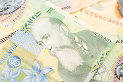 Romanian Lei Banknotes Stock Image