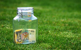 Romanian Lei In Jar. Romanian lei sitting in a glass jar on grass.  Conceptual Royalty Free Stock Photography