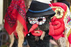 Romanian masks Stock Images