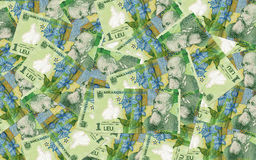 Romanian money background Stock Image