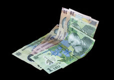 Romanian money bills Royalty Free Stock Image