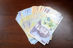 Romanian money Royalty Free Stock Images