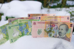 Romanian Money in Winter. Romanian currency in the snow stock photos